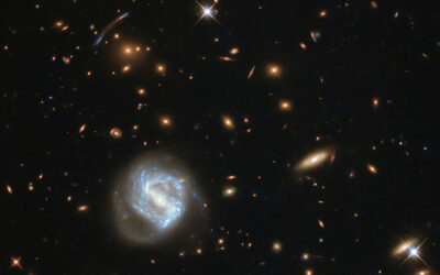 Dwarf galaxies in the Local Group and beyond