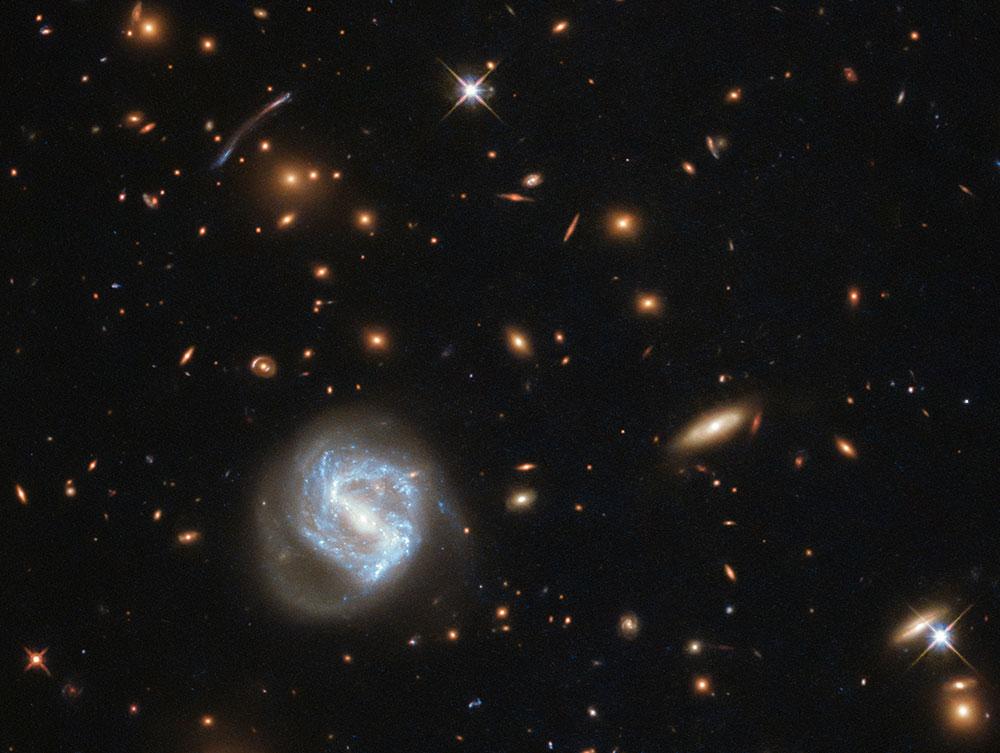 A dwarf galaxy cluster