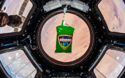 9 unusual things researchers launched into space for science